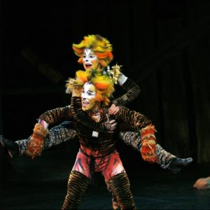Theater Performance Cats